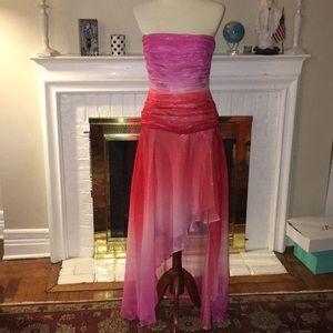 Bcbg Maxazria metallic Gown Sz 10